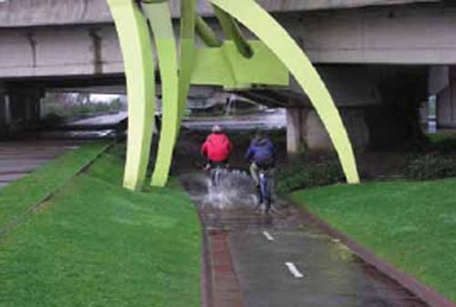 Image 1: Segregated bicycle lanes (Source: ITDP. Ciclociudades. 2011).